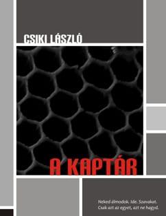 Csiki László: A kaptár